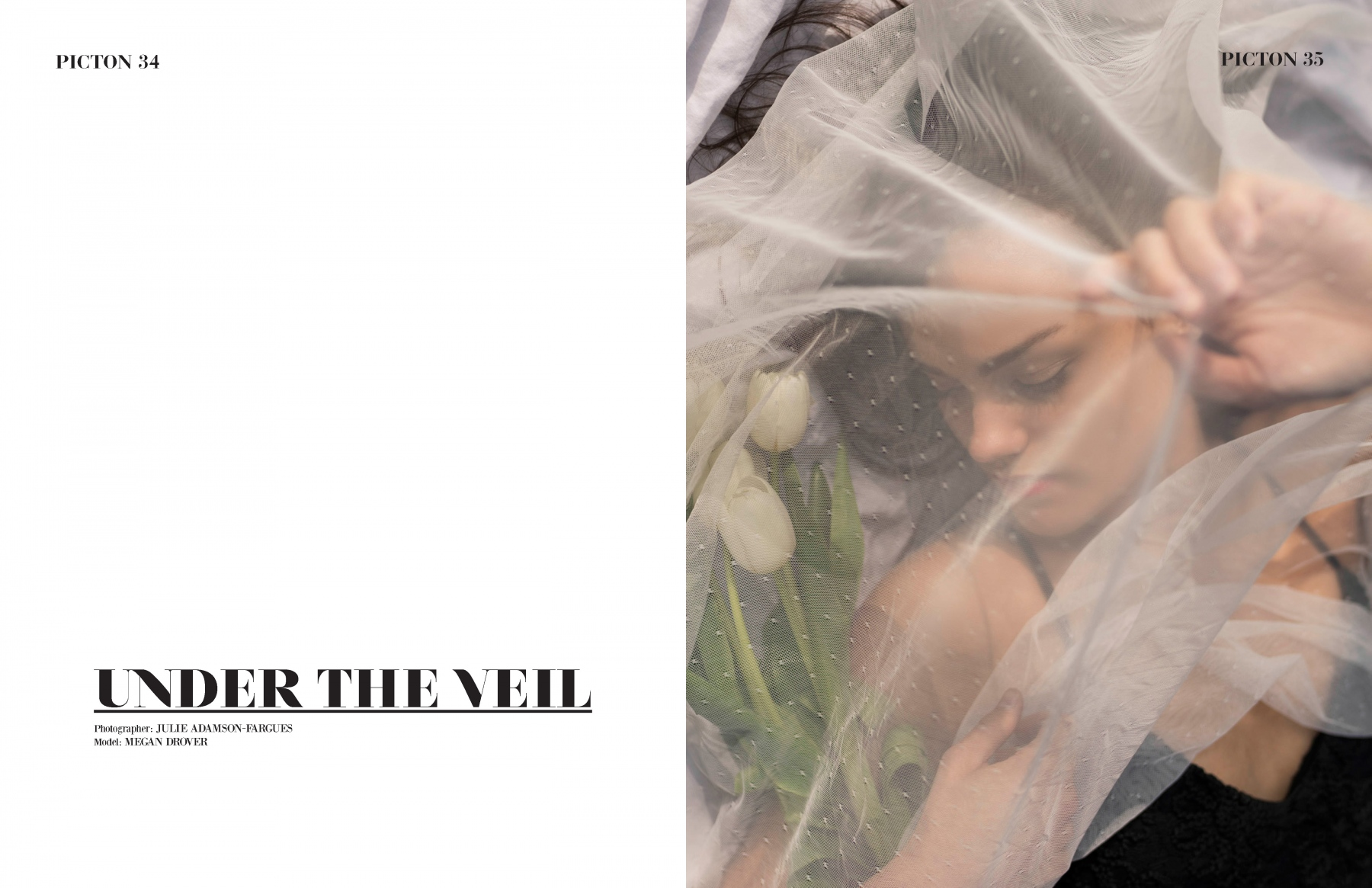 UNDER-THE-VEIL_Page_1